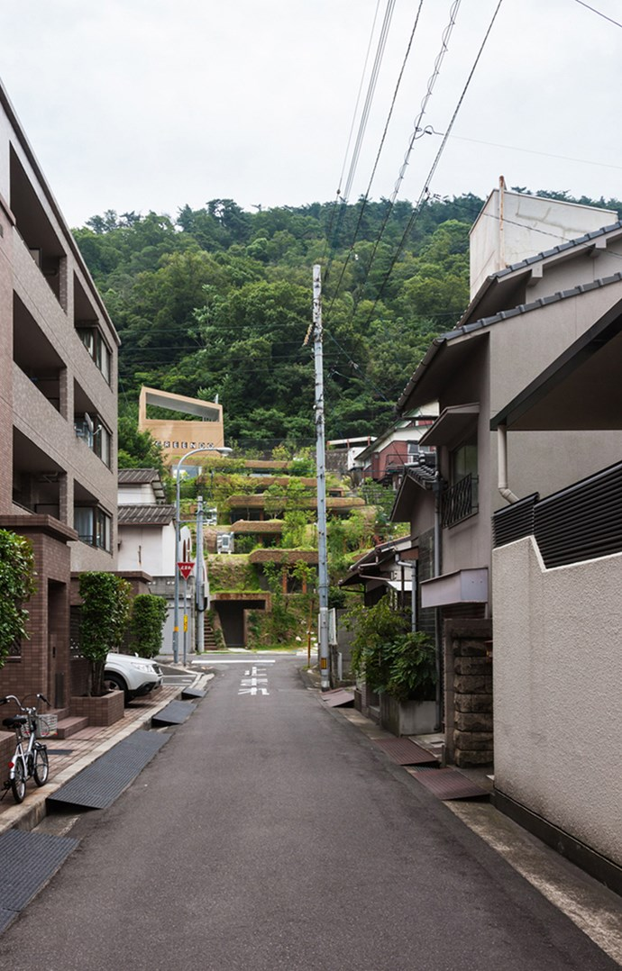 Greendo viewed from an opposing street. Photo: Courtesy of Keita Nagata Architectural Element