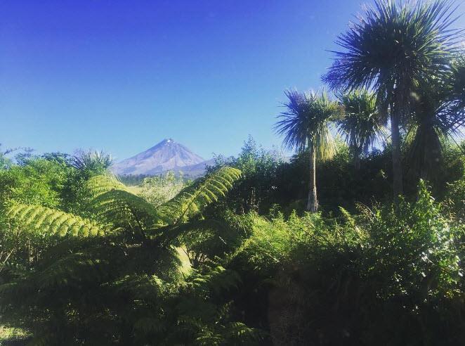 View of Mt Egmont