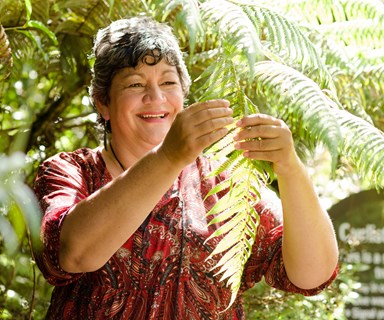 The workaholic who became a Maori healer