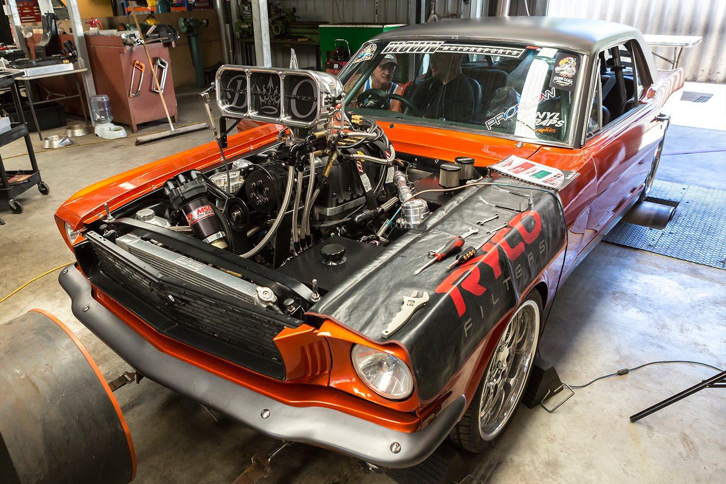 Sicko Mustang
