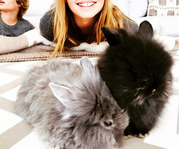 Gywneth Paltrow and her kids Apple and Moses welcomed these adorable bunnies into their family!