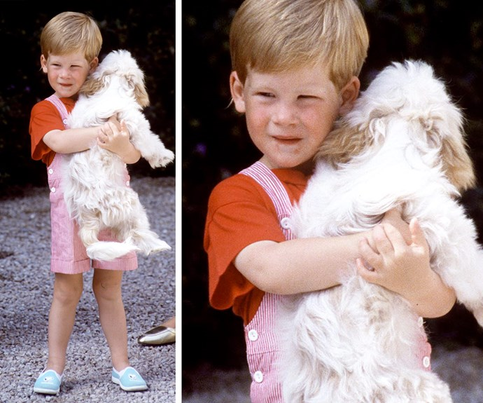 Young Harry back in 1987 enjoyed a cuddle with a cute dog in Spain.