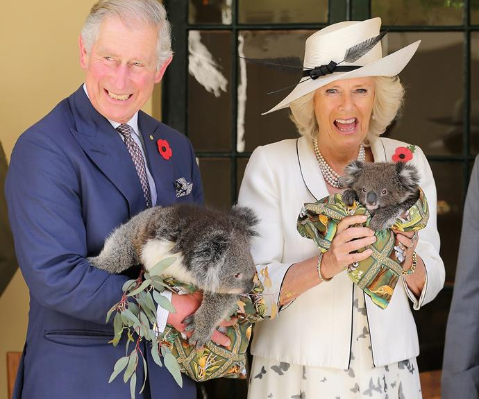 We cannot wait to recreate this iconic photo of Charles and Camilla when they [come back to Oz in November!]( http://www.womansday.com.au/royals/british-royal-family/prince-charles-and-duchess-camilla-to-visit-australia-13032) BYO top koality banter.