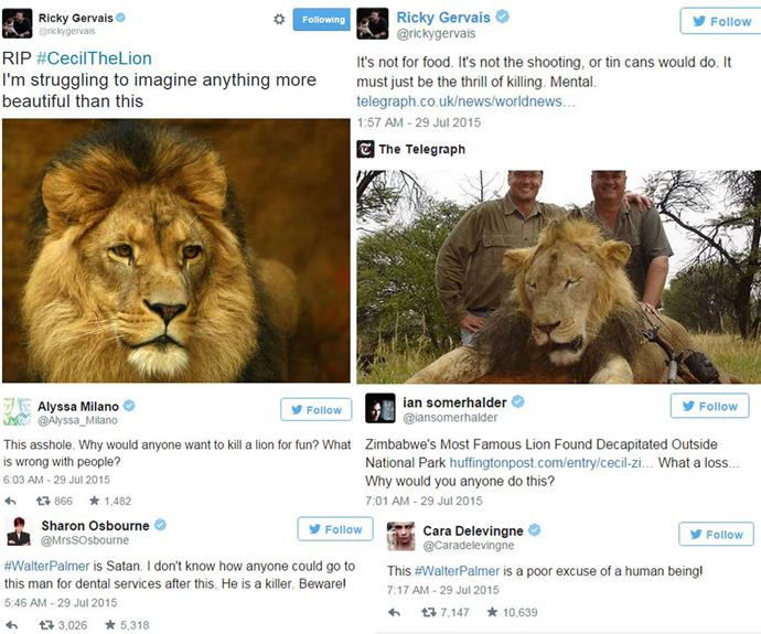 Ricky Gervais couldn't hide his disdain over the malicious hunting of Cecil, voicing his outrage on Twitter.