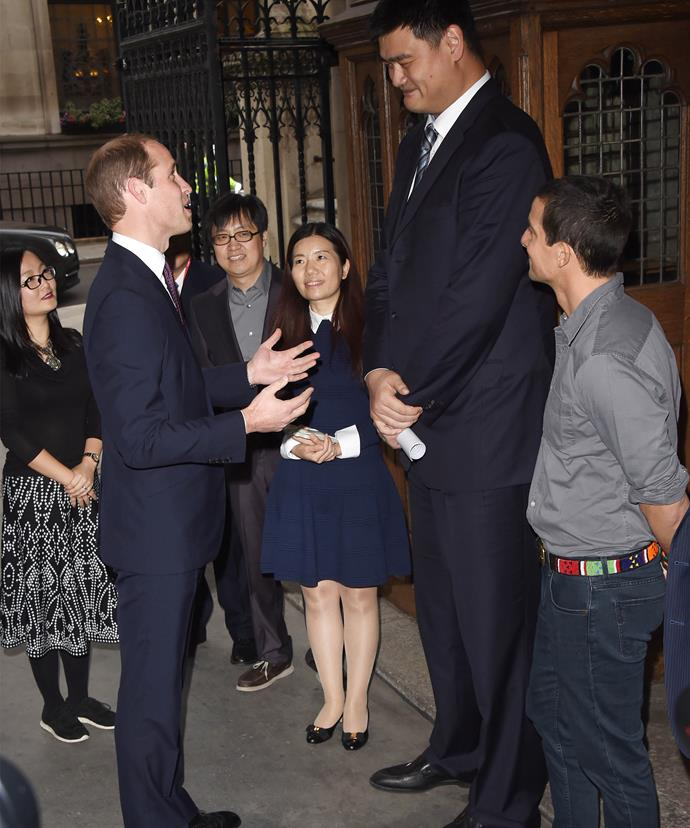 """Crick in your neck, Your Highness? 7""""5 Yao Ming towers over 6""""2 Prince William."""