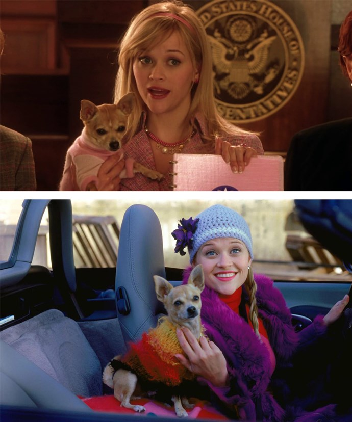 Reese thinks the world is ready for a third *Legally Blonde*!