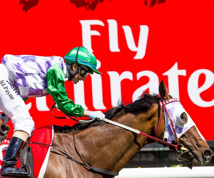 2015 was the year Michelle Payne became a household name after she became the first ever woman to win the Melbourne Cup on the back of New Zealand thoroughbred Prince of Penzance.