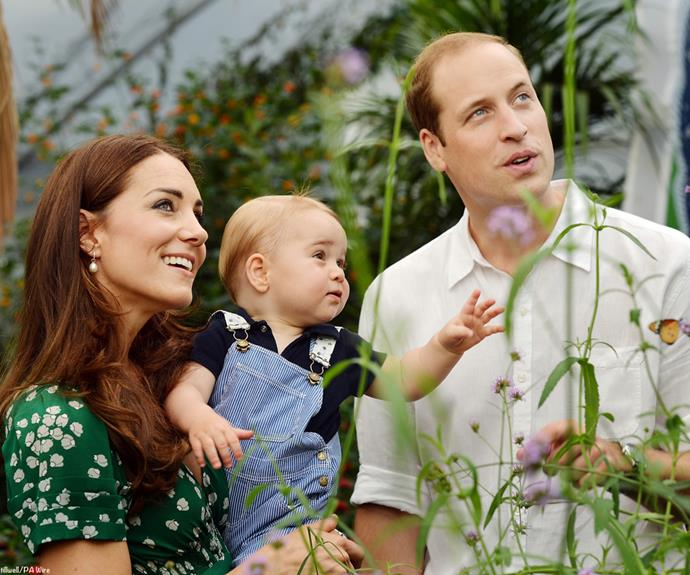 The Duke and Duchess and their little prince enjoy some time at a butterfly farm.
