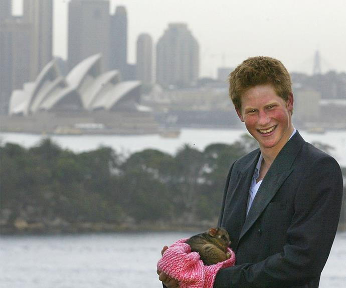 "Her love of the nation has been inherited by her family, including [Prince Harry](https://www.nowtolove.com.au/tags/prince-harry|target=""_blank"") who spent his 2003 gap year here."