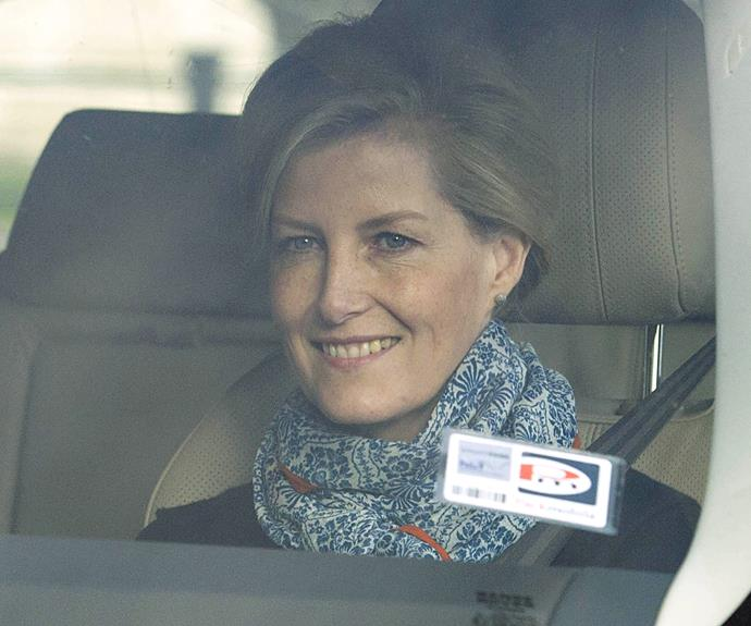 Sophie, the Countess of Wessex was all smiles as she drove into the palace.