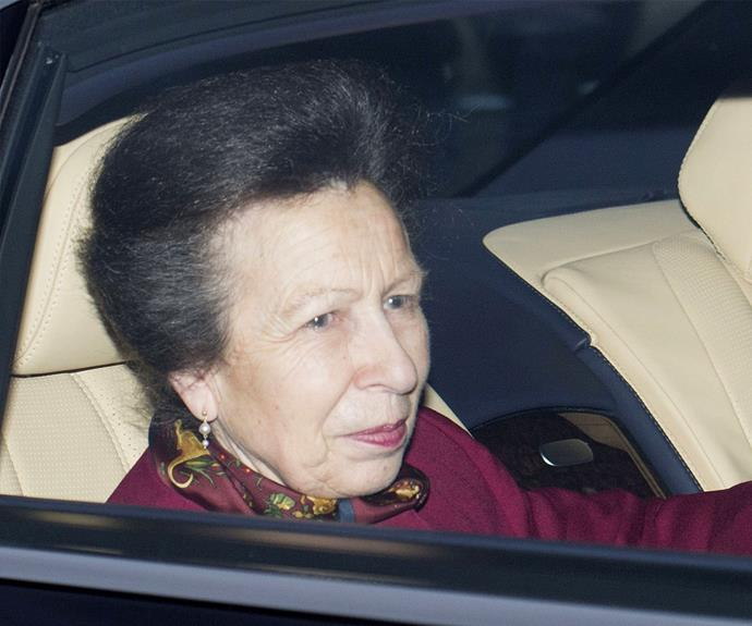 Princess Anne no doubt would have loved the family catch up.
