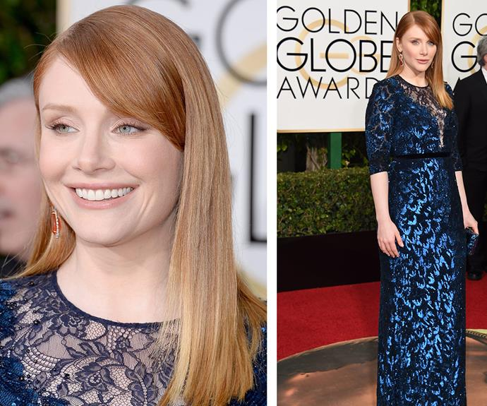 *Jurassic World* star Bryce Dallas Howard brought the sparkle in this midnight blue gown.