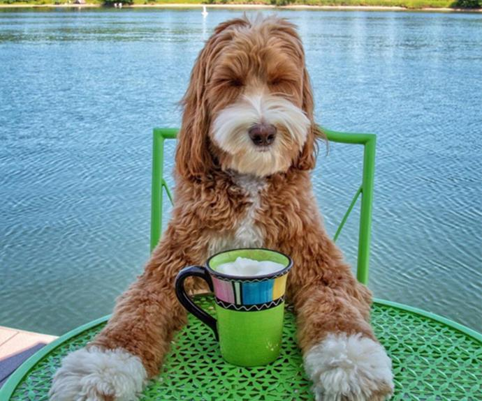 There's nothing quite like enjoying a nice cuppa by the water!