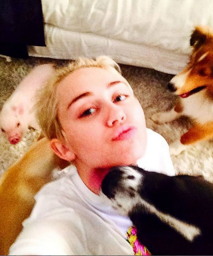 Miley with her fur babies.