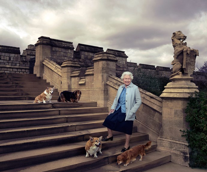 The Queen poses with her corgis and dorgies Willow, Vulcan, Candy and Holly. (Photo credit/ 2016 Annie Leibovitz)