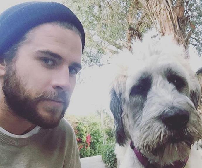 Liam, pictured with his rescue dog Dora, is a huge animal lover like his girlfriend Miley.