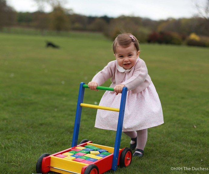 The stunning snaps were taken by Duchess Catherine in April, 2016 at Anmer Hall in Norfolk.