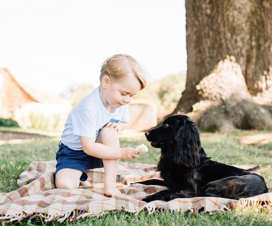 George cheekily tried to feed the family dog Lupo in his third birthday photographs.