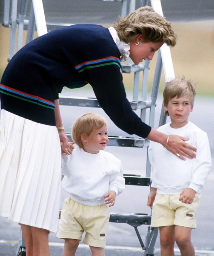 Diana's two sons were the centre of her universe.
