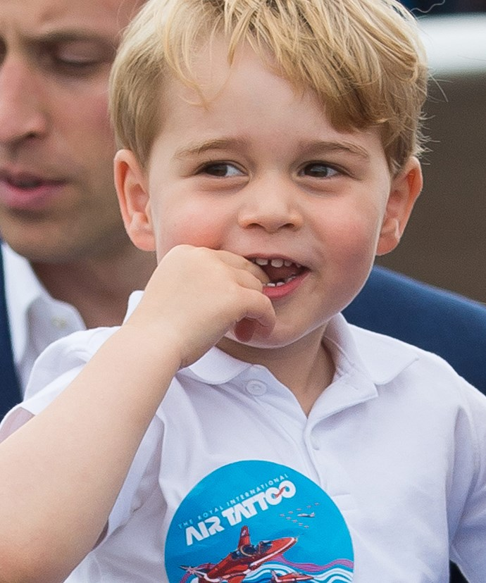 Prince George will love playing with the dogs.