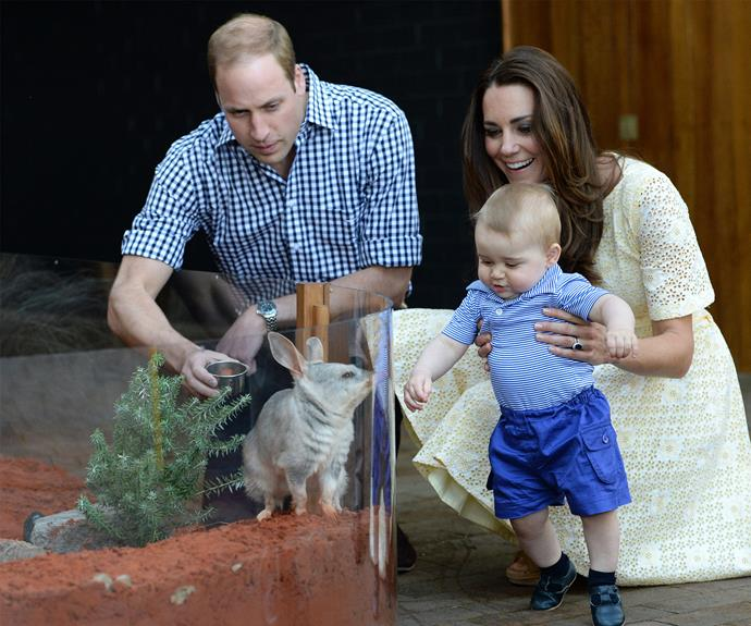Prince George was so excited on his Australia tour!