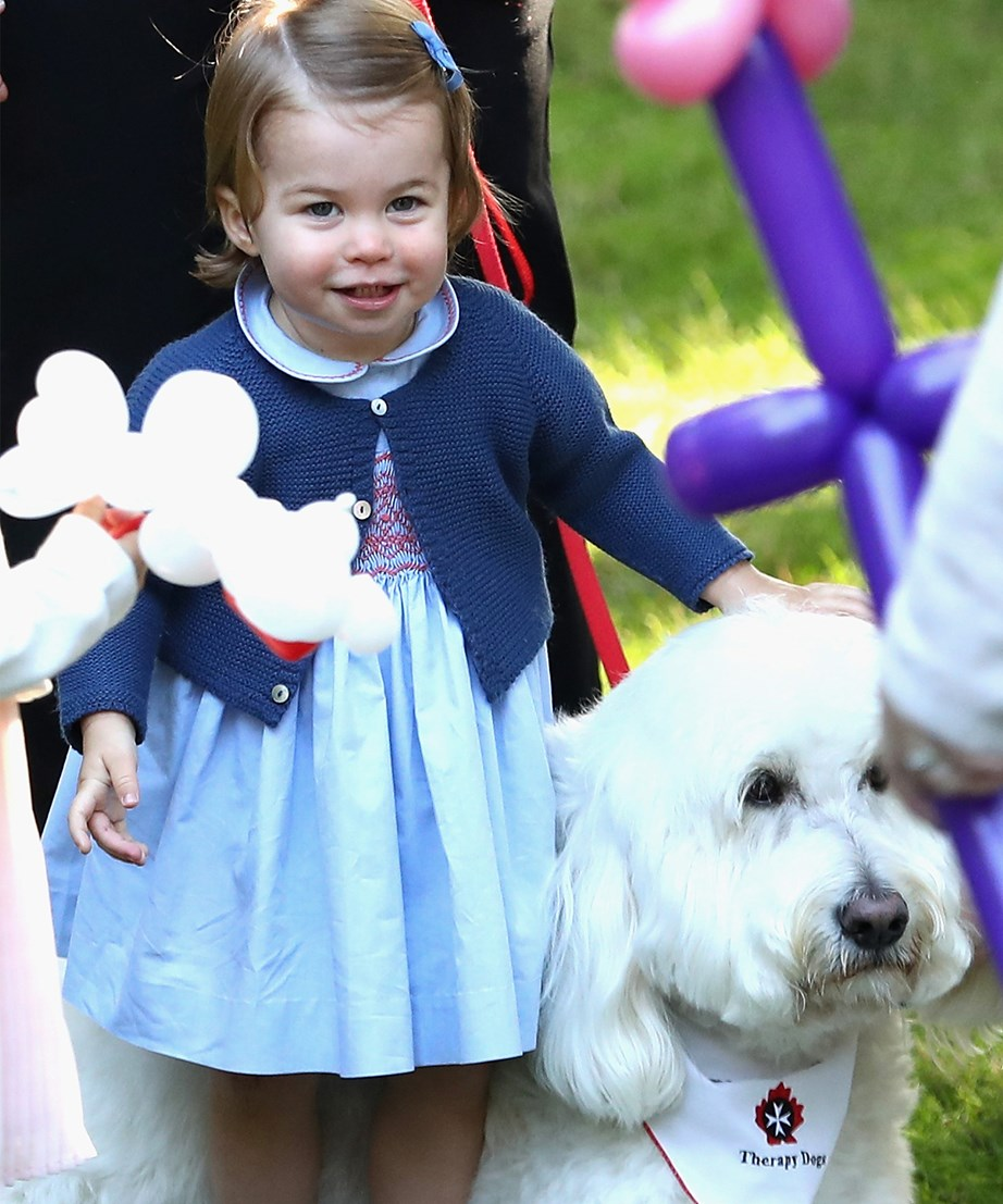 "Charlotte looked pleased after making a new furry friend during a [royal tour of Canada](https://www.nowtolove.co.nz/celebrity/royals/adorable-prince-george-and-princess-charlottes-canadian-play-date-15548|target=""_blank""). *(Image: Getty)*"