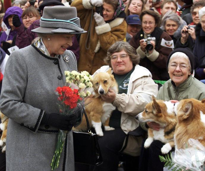 Queen Elizabeth has loved corgis since she was gifted one at age 18.
