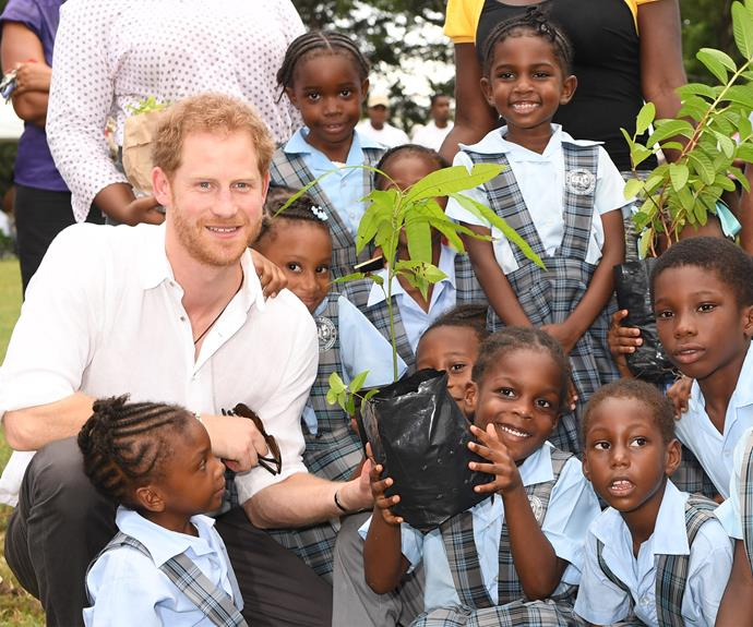 Three days into his tour, and Prince Harry is already rolling up his sleeves.