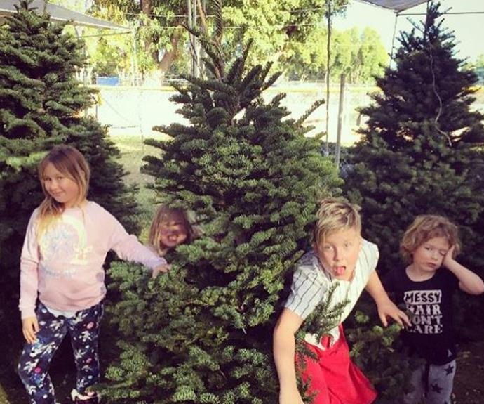 """""""This pretty much sums up their personalities by birth order! Do a zoom in on Hattie it's worth it ha ha! At the #christmastreelot picking out our family tree! Surprisingly no arguments yet ;) #HolidaySeason,"""" Tori Spelling revealed."""