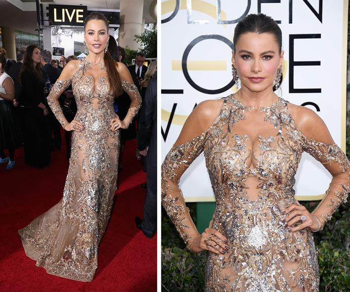 Wowsers, Sofia Vergara's near naked dress by Zuhair Murad certainly turned heads.