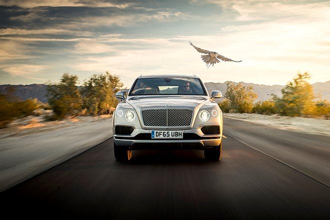 Bentley Bentayga falconry with falcon