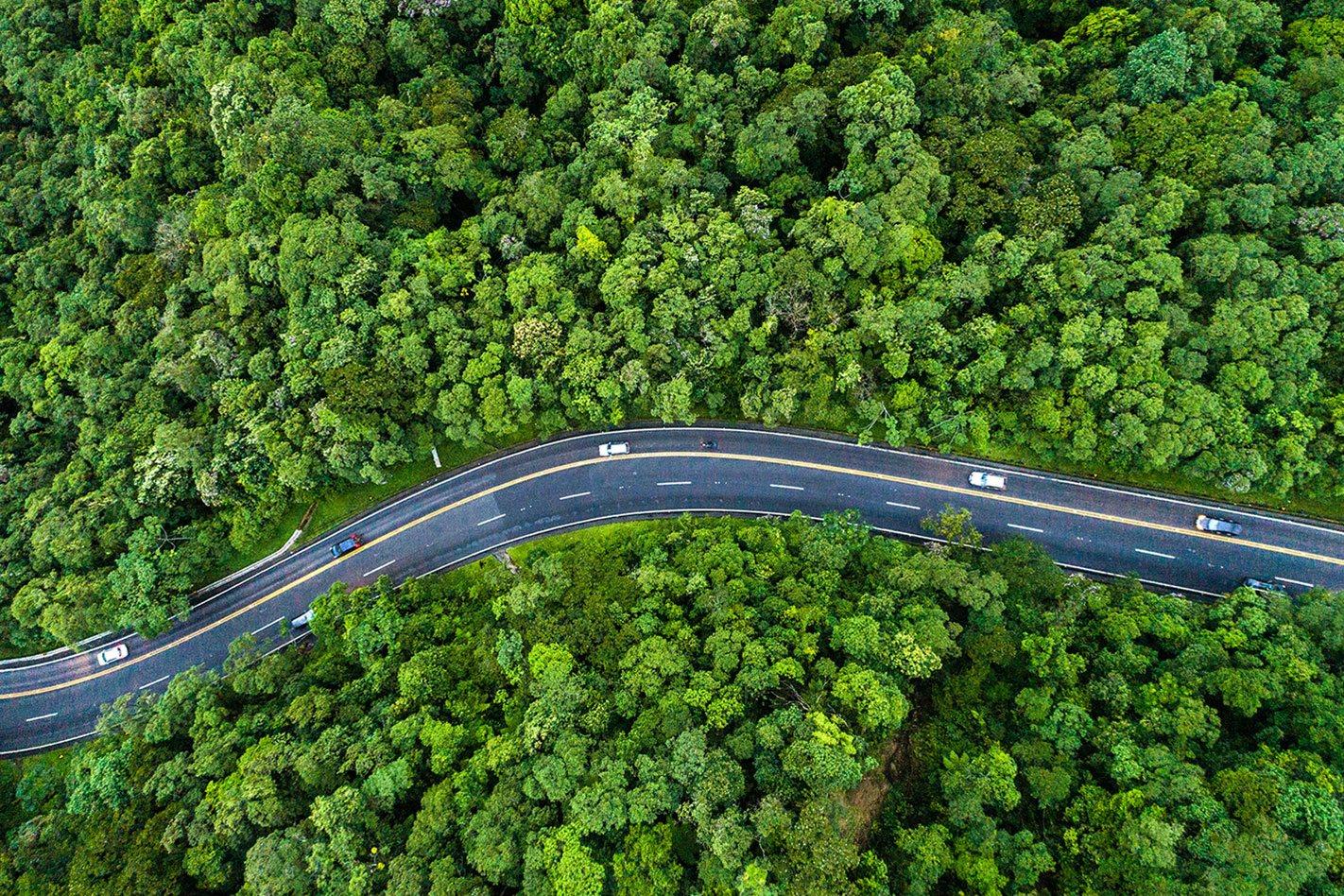 Eco-friendly Cars