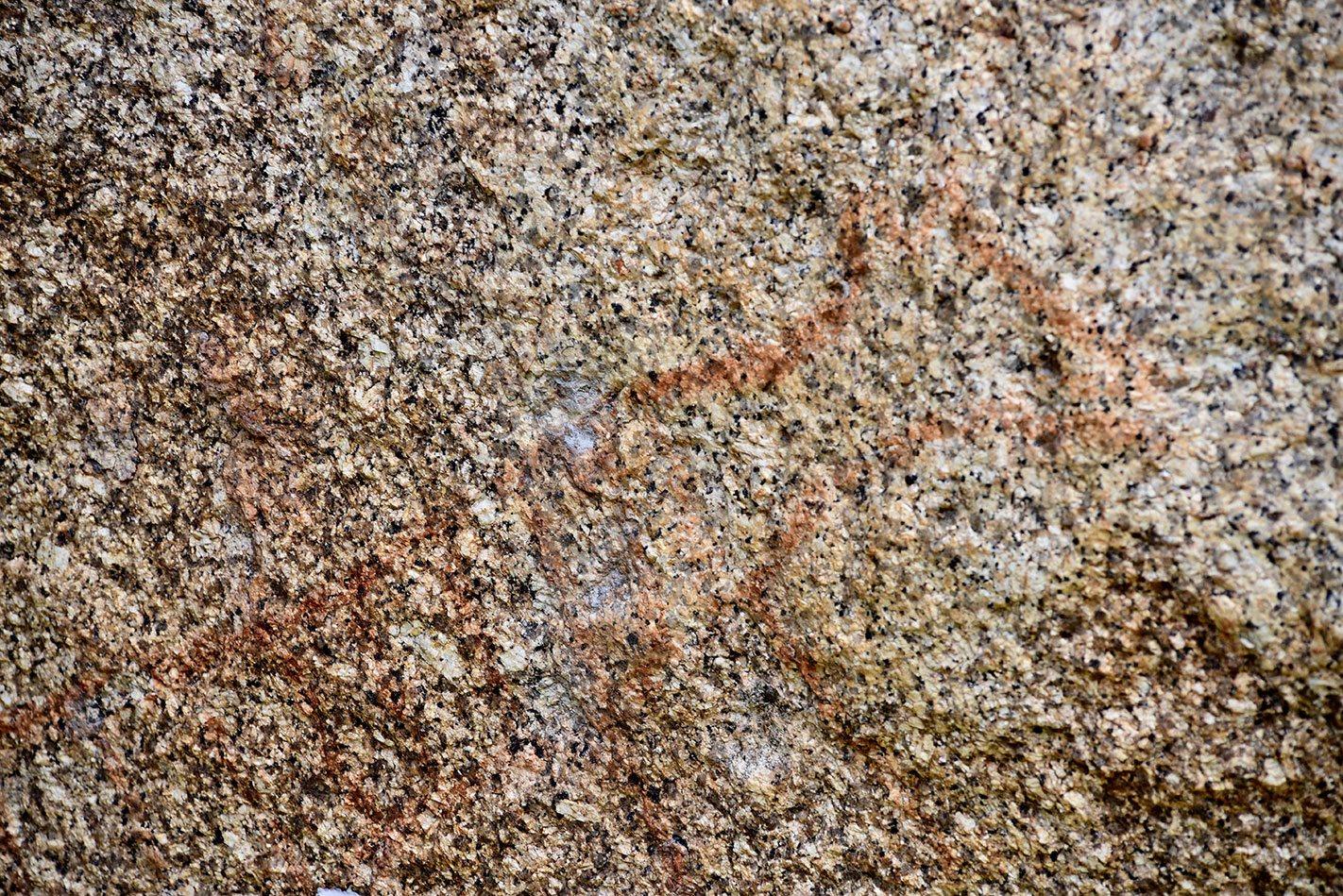 Aboriginal Painting Tasmanian Tiger